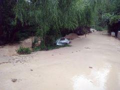Darende'de sağanak yağış sele neden oldu