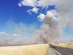 Malatya'da anız yangını