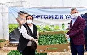 Yeşilyurt'ta 100 bin sebze fidesi dağıtımına başlandı