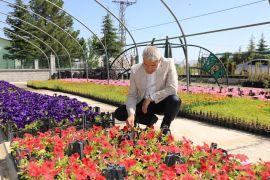 Battalgazi her mevsim çiçek kokuyor
