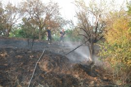 Otluk alanda başlayan yangın kayısı bahçesine sıçramadan söndürüldü
